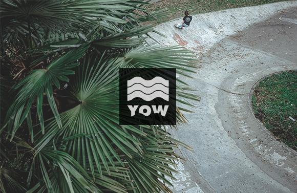 YOW SURFSKATE